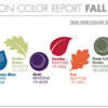 Pantone Fashion Color Report for Women Fall 2013